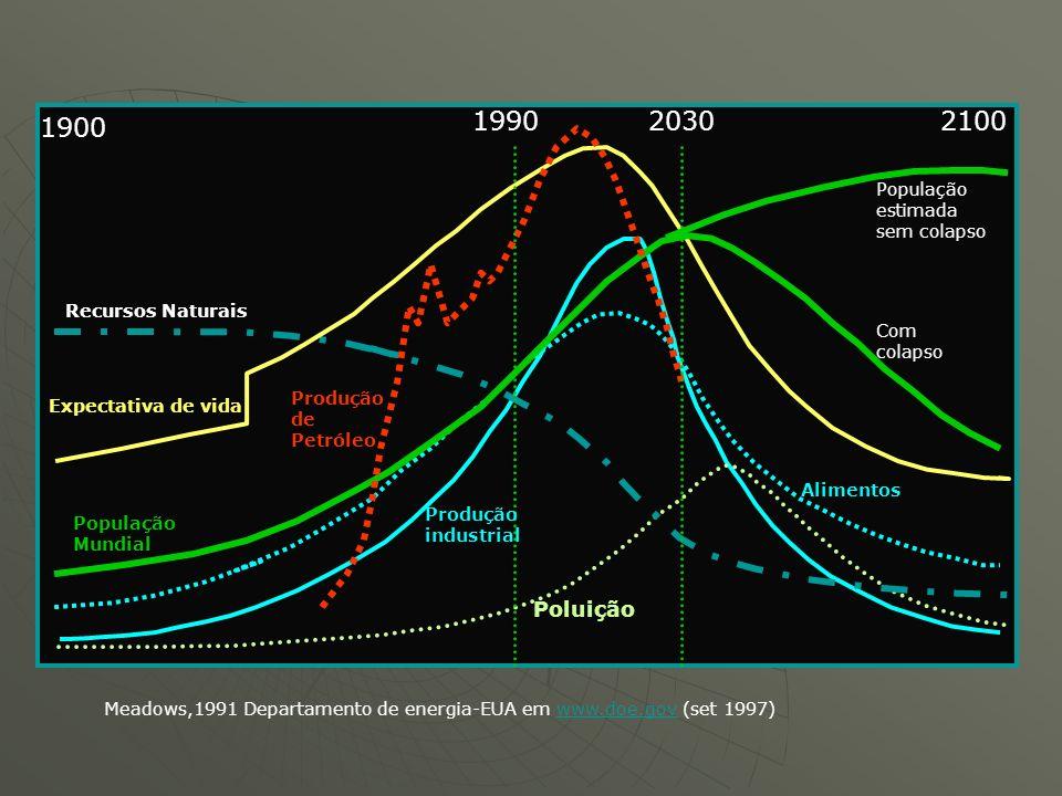 Recursos Naturais Expectativa de vida Produção de Petróleo População Mundial Produção industrial Poluição Alimentos População estimada sem colapso Com