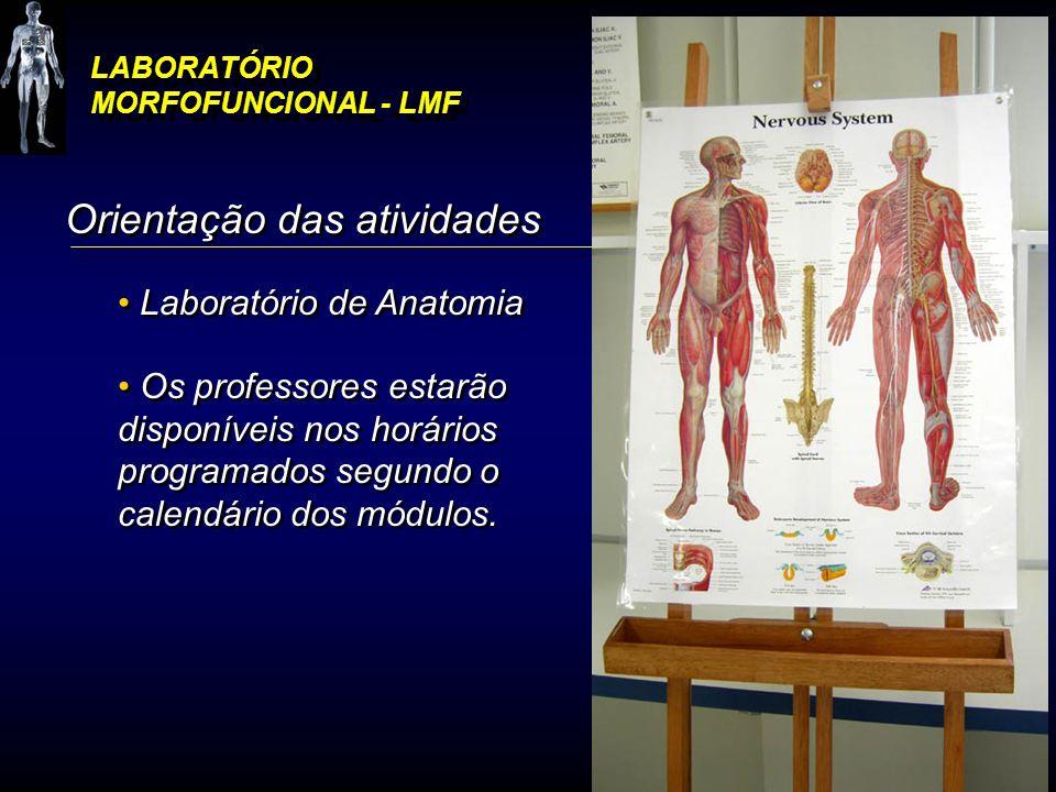 LABORATÓRIO MORFOFUNCIONAL - LMF Orientação das atividades Laboratório de Anatomia Os professores estarão disponíveis nos horários programados segundo