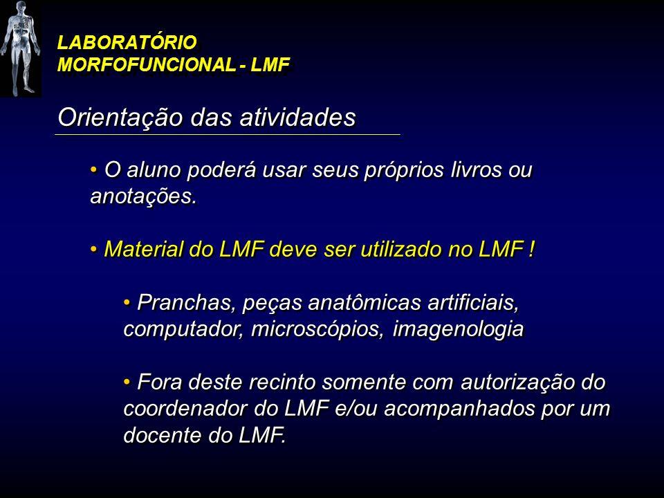 LABORATÓRIO MORFOFUNCIONAL - LMF Orientação das atividades O aluno poderá usar seus próprios livros ou anotações. Material do LMF deve ser utilizado n