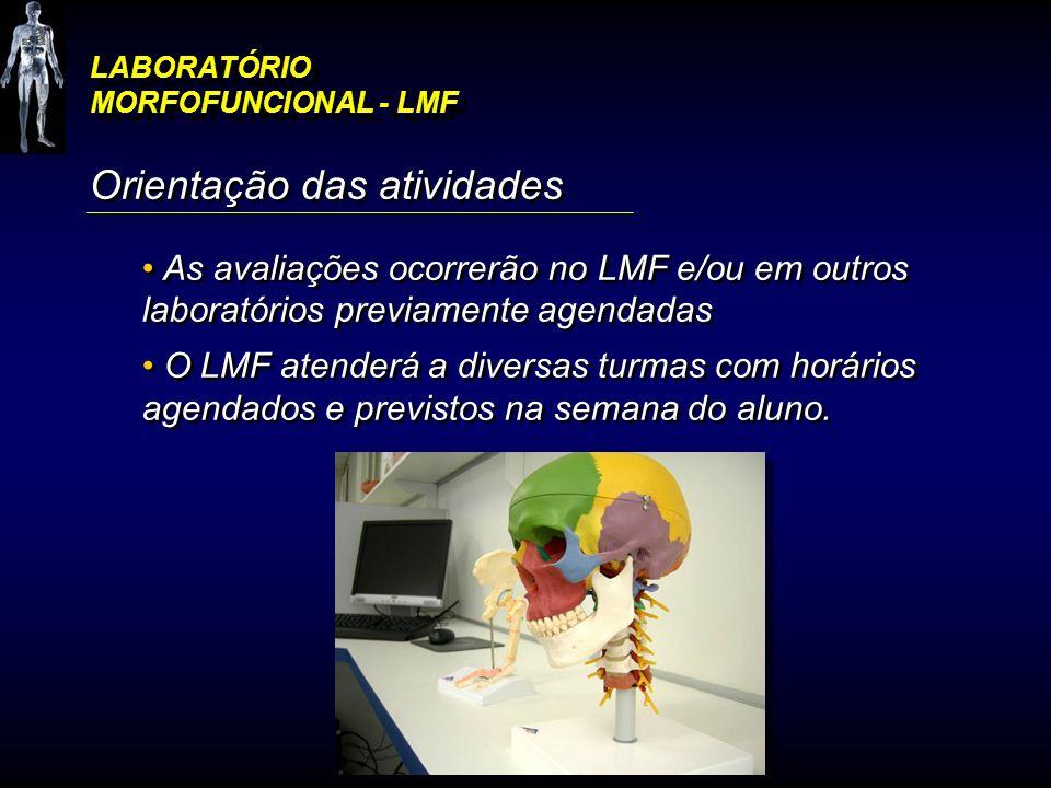 LABORATÓRIO MORFOFUNCIONAL - LMF Orientação das atividades As avaliações ocorrerão no LMF e/ou em outros laboratórios previamente agendadas O LMF aten