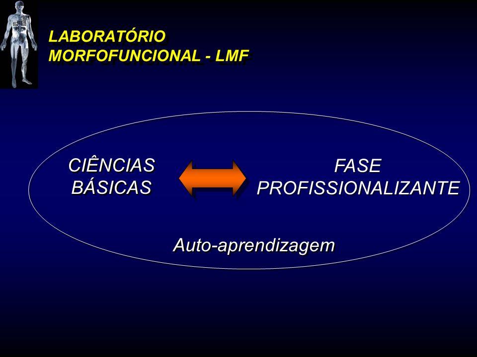 LABORATÓRIO MORFOFUNCIONAL - LMF Auto-aprendizagem FASE PROFISSIONALIZANTE FASE PROFISSIONALIZANTE CIÊNCIAS BÁSICAS CIÊNCIAS BÁSICAS
