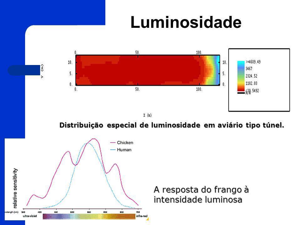 Luminosidade 15 Distribuição especial de luminosidade em aviário tipo túnel. A resposta do frango à intensidade luminosa