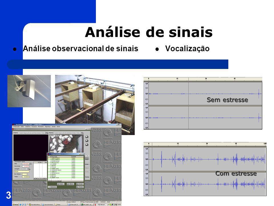Análise de sinais Análise observacional de sinais Vocalização 33 Sem estresse Com estresse
