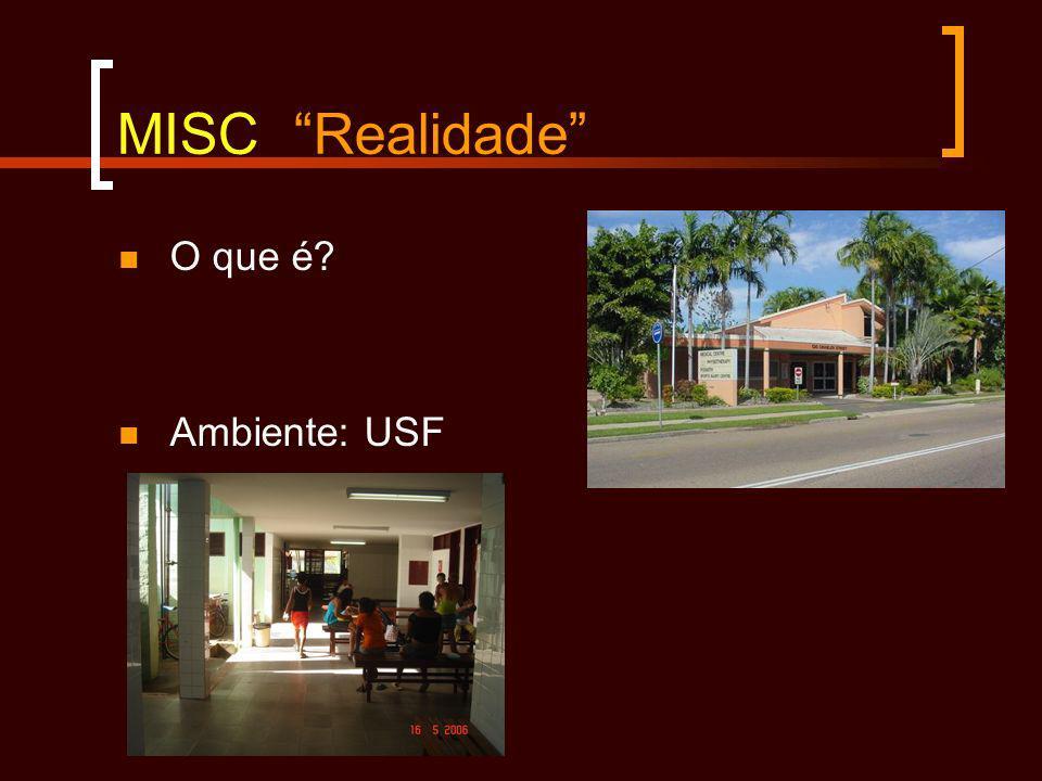 MISC Realidade O que é? Ambiente: USF