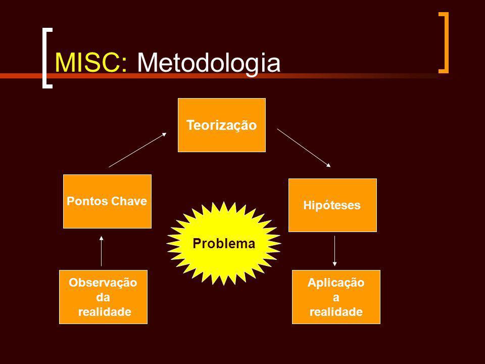 Observação da realidade Aplicação a realidade Pontos Chave Hipóteses Teorização Problema MISC: Metodologia