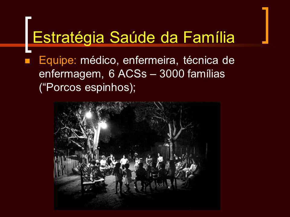 Estratégia Saúde da Família Equipe: médico, enfermeira, técnica de enfermagem, 6 ACSs – 3000 famílias (Porcos espinhos);
