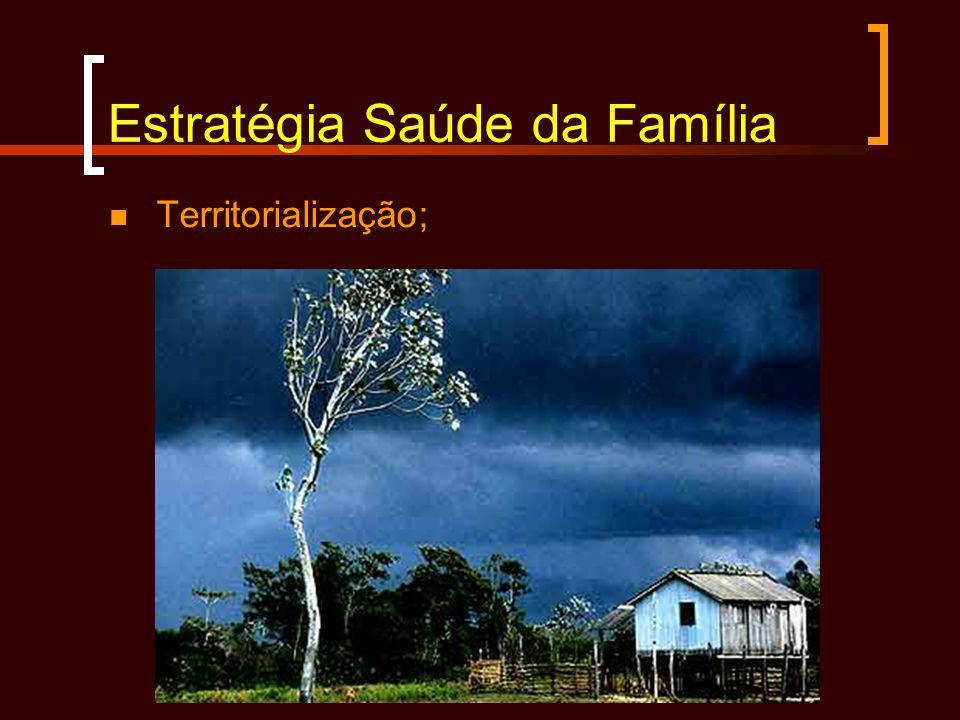 Estratégia Saúde da Família Territorialização;