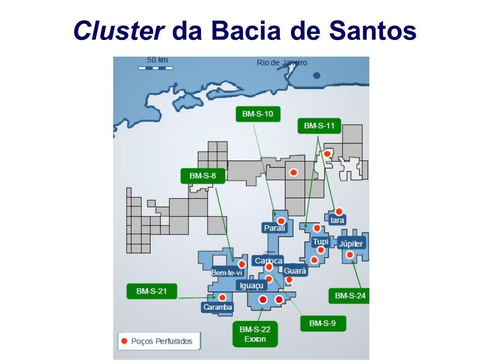 Iara (BM-S-11) - 3 a 4 bilhões de barris Tupi (BM-S-11) 5 a 8 bilhões de barris (?) A União tem 5 bilhões de barris em áreas não concedidas Guará - 1,1 a 2 bilhões de barris O diretor (Barbassa) ainda lembrou que a unitização de Iara é um dos principais passos dentro do processo de capitalização da Petrobras*.