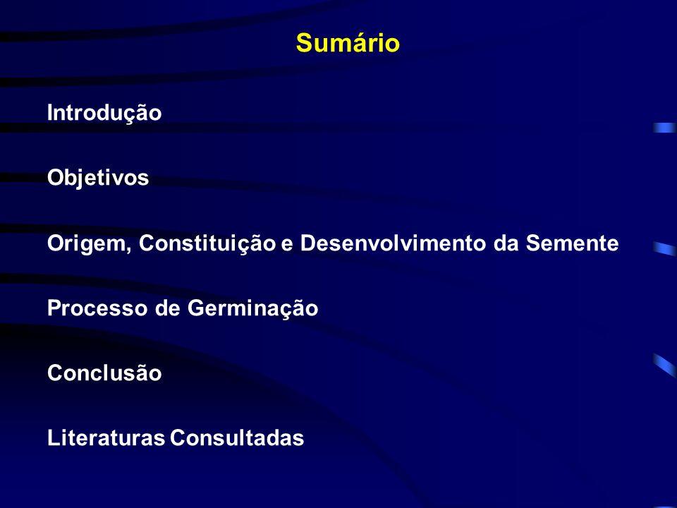 Sumário Introdução Objetivos Origem, Constituição e Desenvolvimento da Semente Processo de Germinação Conclusão Literaturas Consultadas