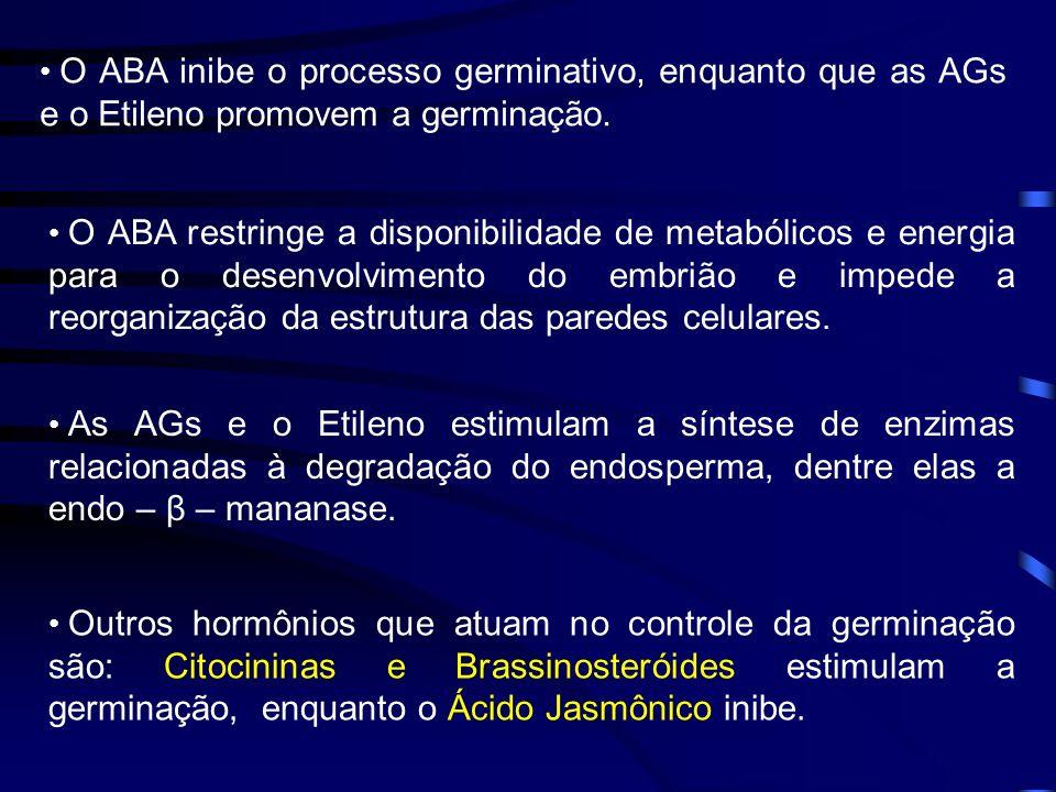 O ABA inibe o processo germinativo, enquanto que as AGs e o Etileno promovem a germinação. Outros hormônios que atuam no controle da germinação são: C