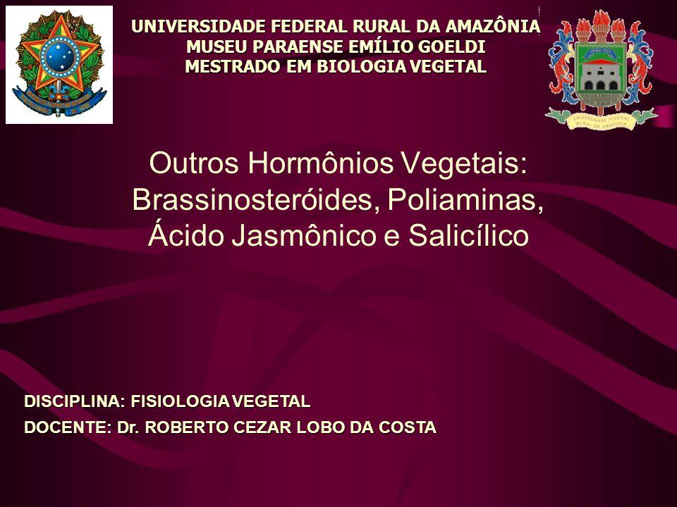 Outros Hormônios Vegetais: Brassinosteróides, Poliaminas, Ácido Jasmônico e Salicílico UNIVERSIDADE FEDERAL RURAL DA AMAZÔNIA MUSEU PARAENSE EMÍLIO GO