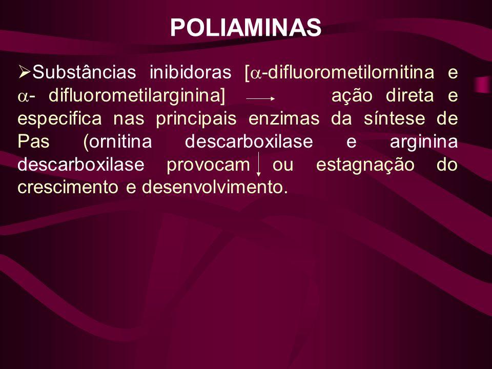 POLIAMINAS Substâncias inibidoras [ -difluorometilornitina e - difluorometilarginina] ação direta e especifica nas principais enzimas da síntese de Pa