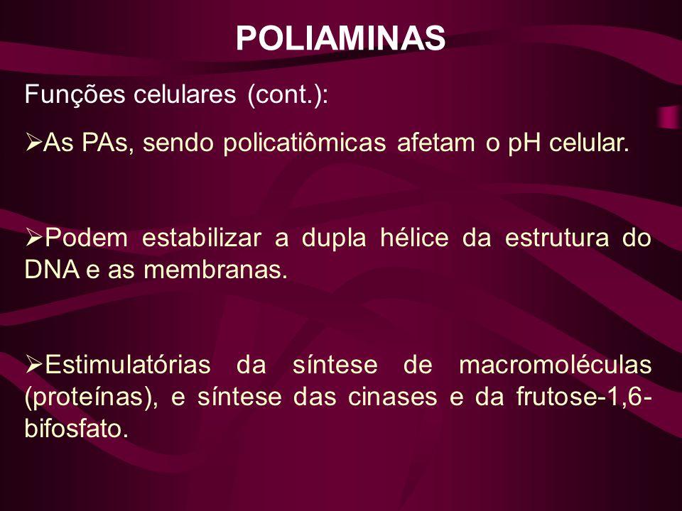 POLIAMINAS Funções celulares (cont.): As PAs, sendo policatiômicas afetam o pH celular. Podem estabilizar a dupla hélice da estrutura do DNA e as memb