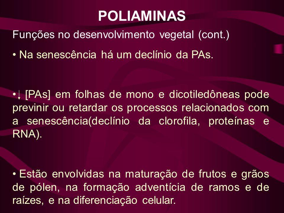POLIAMINAS Funções no desenvolvimento vegetal (cont.) Na senescência há um declínio da PAs. [PAs] em folhas de mono e dicotiledôneas pode previnir ou