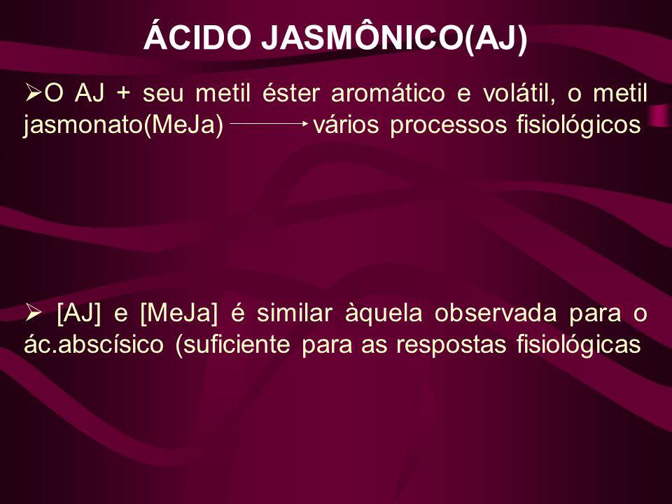 ÁCIDO JASMÔNICO(AJ) O AJ + seu metil éster aromático e volátil, o metil jasmonato(MeJa) vários processos fisiológicos [AJ] e [MeJa] é similar àquela o