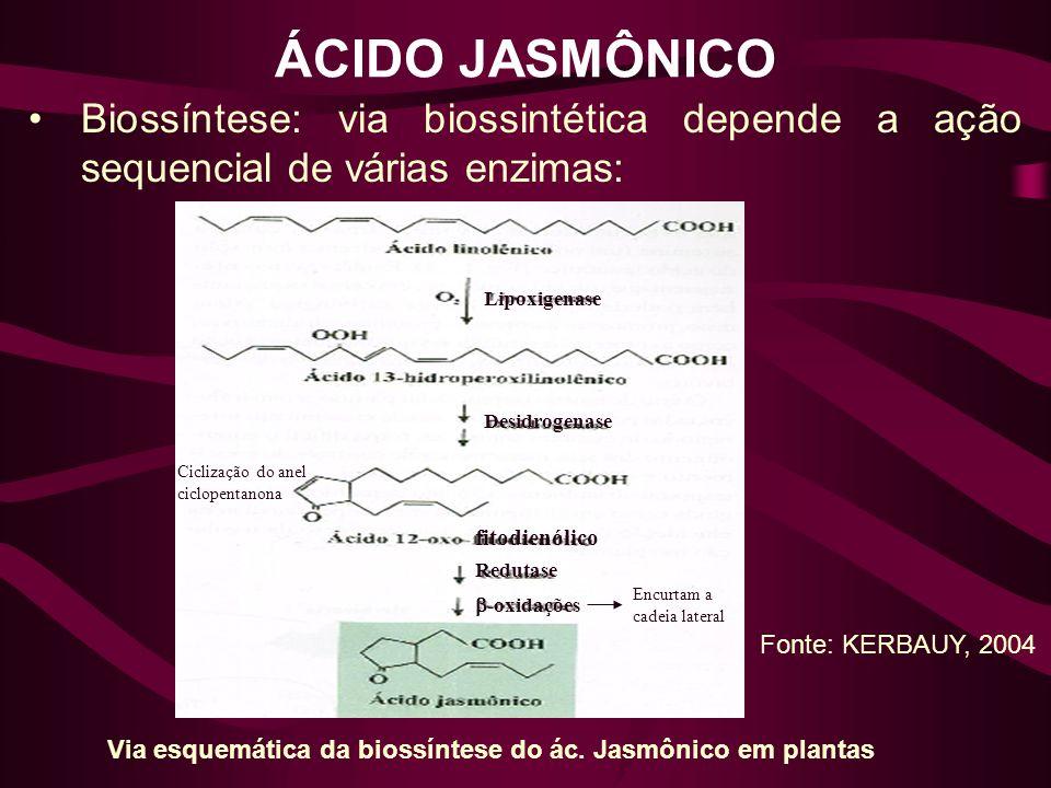 ÁCIDO JASMÔNICO Biossíntese: via biossintética depende a ação sequencial de várias enzimas: Via esquemática da biossíntese do ác. Jasmônico em plantas