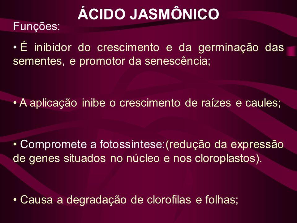 ÁCIDO JASMÔNICO Funções: É inibidor do crescimento e da germinação das sementes, e promotor da senescência; A aplicação inibe o crescimento de raízes