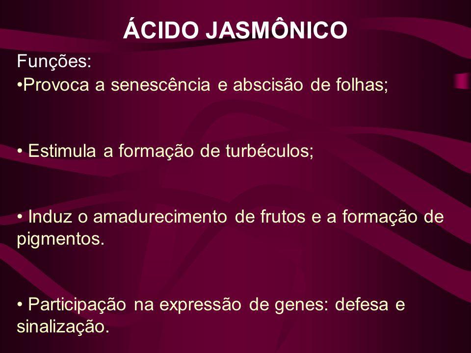 ÁCIDO JASMÔNICO Funções: Provoca a senescência e abscisão de folhas; Estimula a formação de turbéculos; Induz o amadurecimento de frutos e a formação