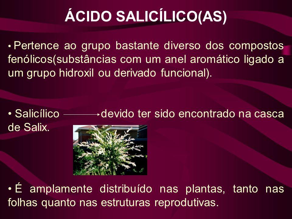 ÁCIDO SALICÍLICO(AS) Pertence ao grupo bastante diverso dos compostos fenólicos(substâncias com um anel aromático ligado a um grupo hidroxil ou deriva