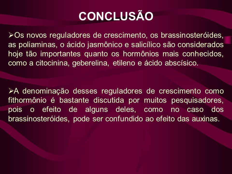 CONCLUSÃO Os novos reguladores de crescimento, os brassinosteróides, as poliaminas, o ácido jasmônico e salicílico são considerados hoje tão important