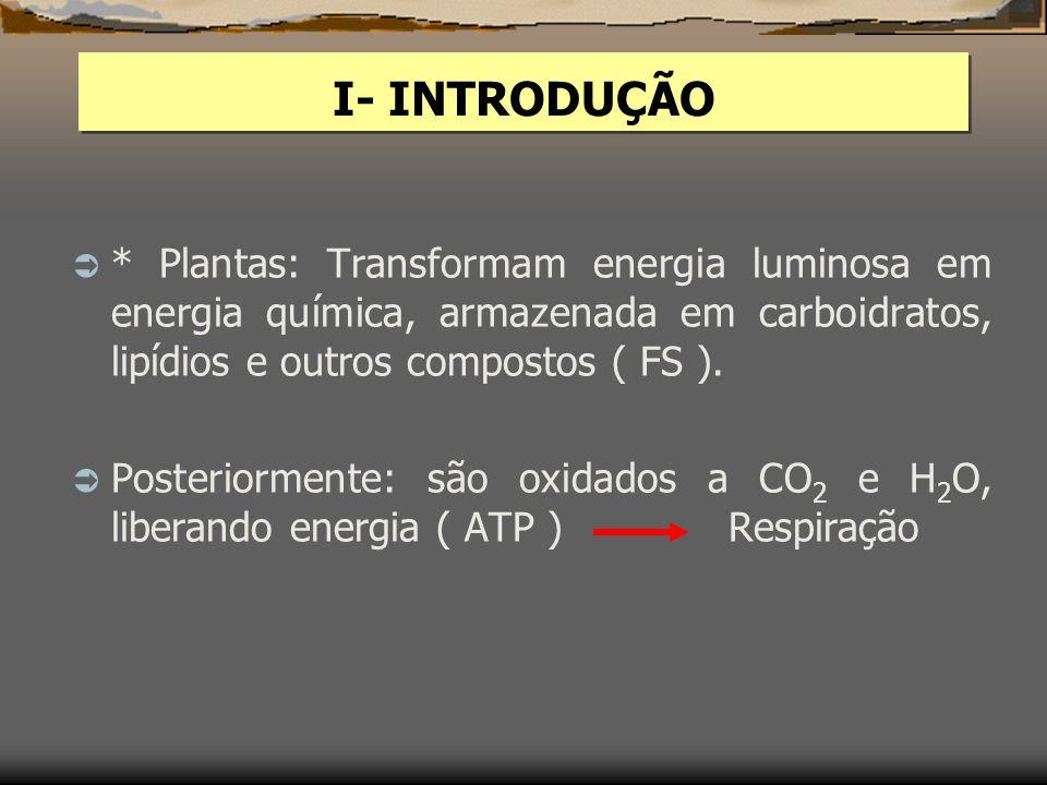 I- INTRODUÇÃO * Plantas: Transformam energia luminosa em energia química, armazenada em carboidratos, lipídios e outros compostos ( FS ).