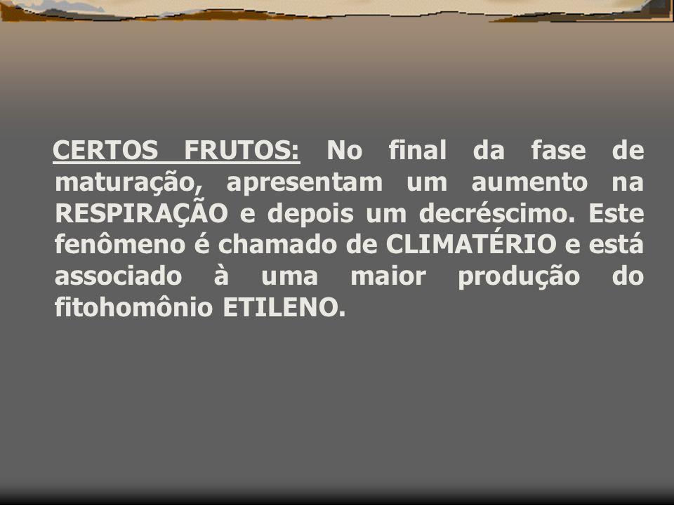FRUTOS CLIMATÉRICOS E FRUTOS NÃO CLIMATÉRICOS
