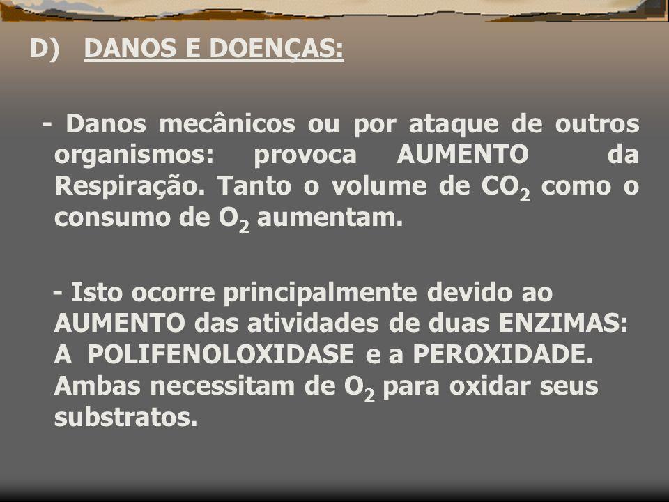 C) TEMPERATURA: Geral : aumento da temperatura provoca aumento da taxa respiratrória.
