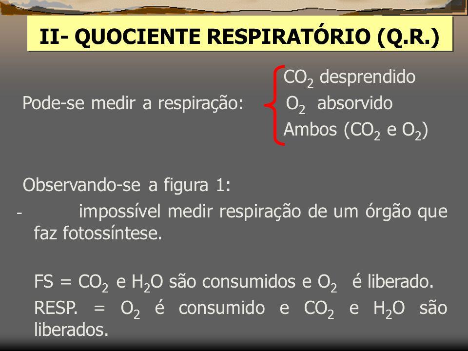 II- QUOCIENTE RESPIRATÓRIO (Q.R.) CO 2 desprendido Pode-se medir a respiração: O 2 absorvido Ambos (CO 2 e O 2 ) Observando-se a figura 1: - impossível medir respiração de um órgão que faz fotossíntese.