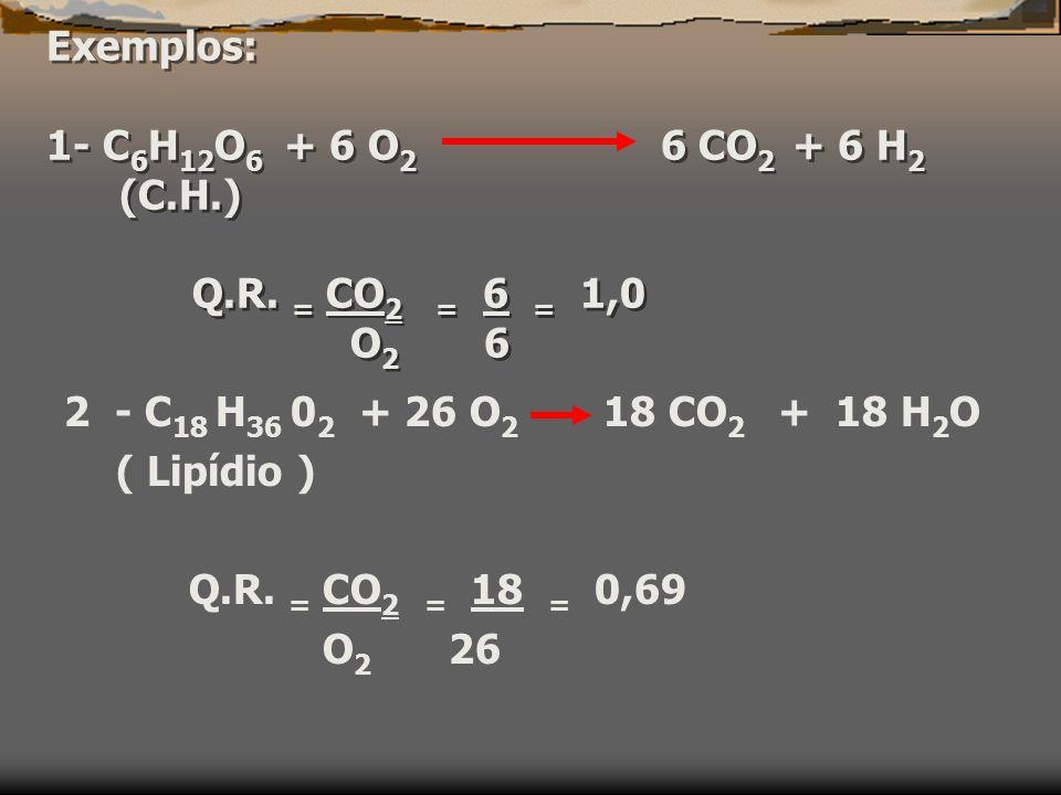 Exemplos: 1- C 6 H 12 O 6 + 6 O 2 6 CO 2 + 6 H 2 (C.H.) Q.R.