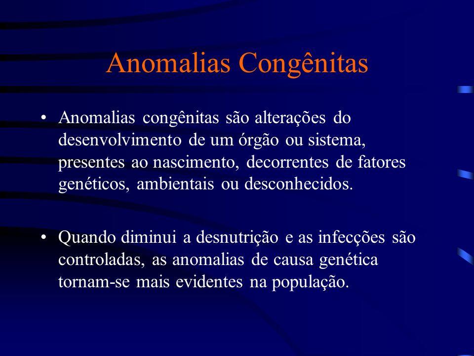 Horovitz, D et al, 2005 Anomalias Congênitas