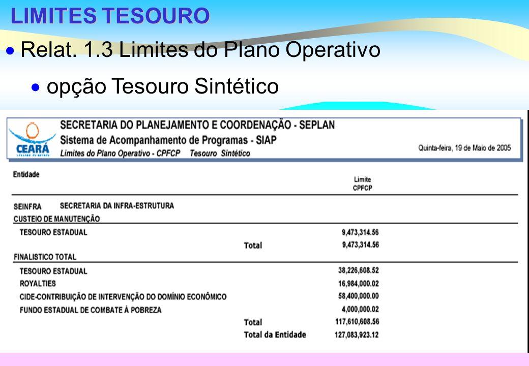 LIMITES TESOURO Relat. 1.3 Limites do Plano Operativo opção Tesouro Sintético