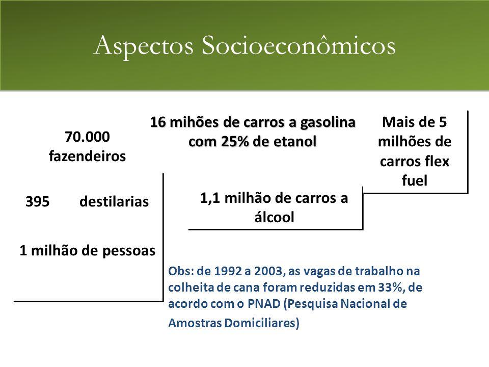 70.000 fazendeiros 395 destilarias 1 milhão de pessoas 70.000 fazendeiros 395 destilarias 1 milhão de pessoas 16 mihões de carros a gasolina com 25% de etanol 1,1 milhão de carros a álcool Mais de 5 milhões de carros flex fuel Obs: de 1992 a 2003, as vagas de trabalho na colheita de cana foram reduzidas em 33%, de acordo com o PNAD (Pesquisa Nacional de Amostras Domiciliares) Aspectos Socioeconômicos