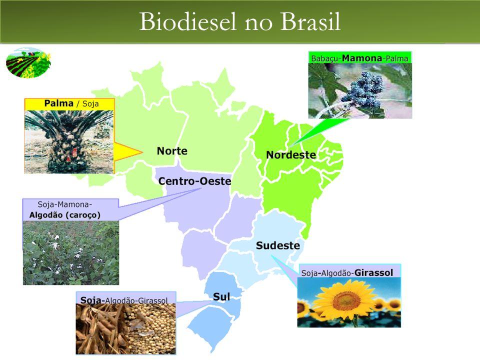 BIODIESEL Biodiesel no Brasil