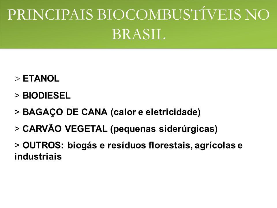 > ETANOL > BIODIESEL > BAGAÇO DE CANA (calor e eletricidade) > CARVÃO VEGETAL (pequenas siderúrgicas) > OUTROS: biogás e resíduos florestais, agrícolas e industriais PRINCIPAIS BIOCOMBUSTÍVEIS NO BRASIL