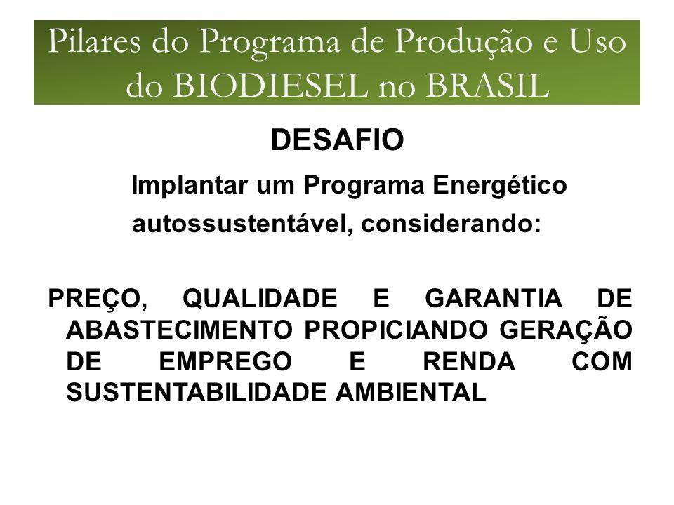 Pilares do Programa de Produção e Uso do BIODIESEL no BRASIL DESAFIO Implantar um Programa Energético autossustentável, considerando: PREÇO, QUALIDADE E GARANTIA DE ABASTECIMENTO PROPICIANDO GERAÇÃO DE EMPREGO E RENDA COM SUSTENTABILIDADE AMBIENTAL