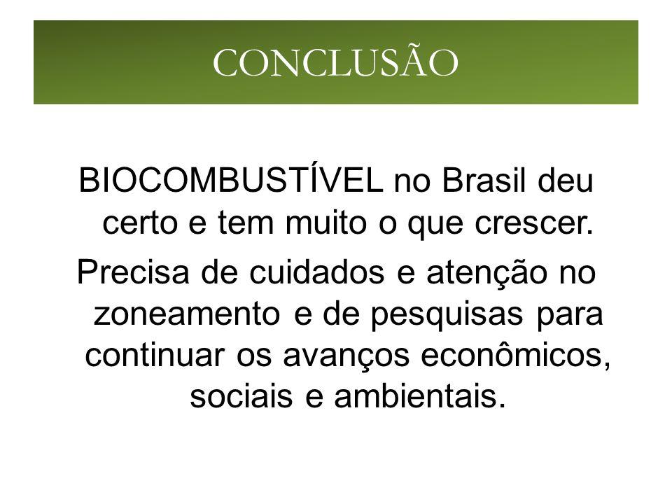 CONCLUSÃO BIOCOMBUSTÍVEL no Brasil deu certo e tem muito o que crescer.
