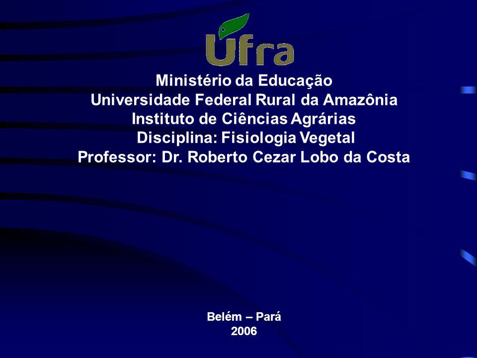 Ministério da Educação Universidade Federal Rural da Amazônia Instituto de Ciências Agrárias Disciplina: Fisiologia Vegetal Professor: Dr.