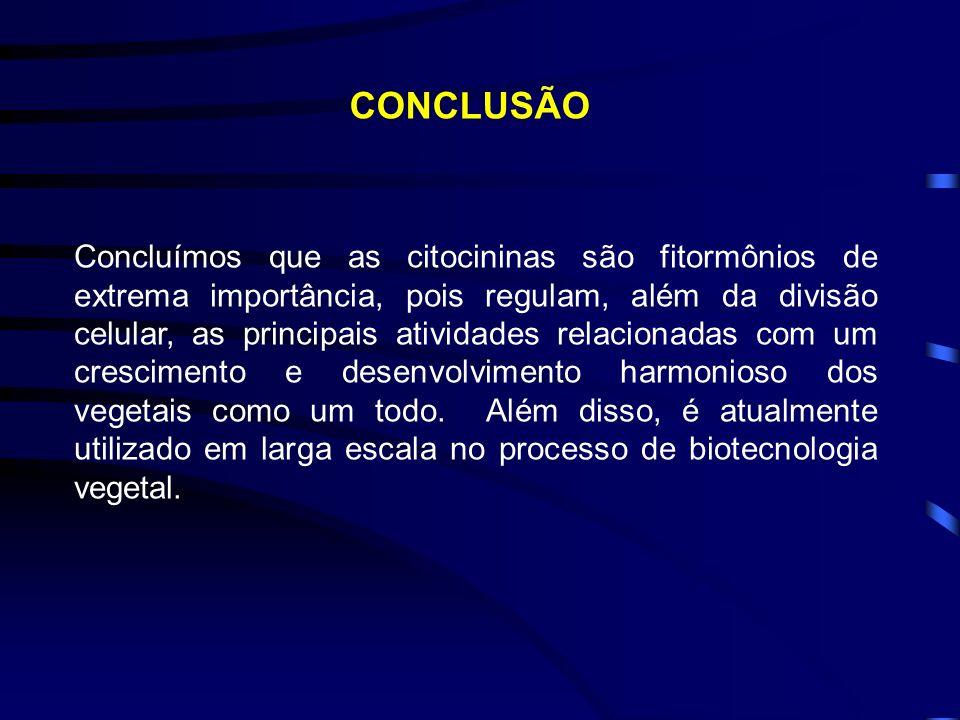MÉTODO DE MICROINJEÇÃO DE DNA