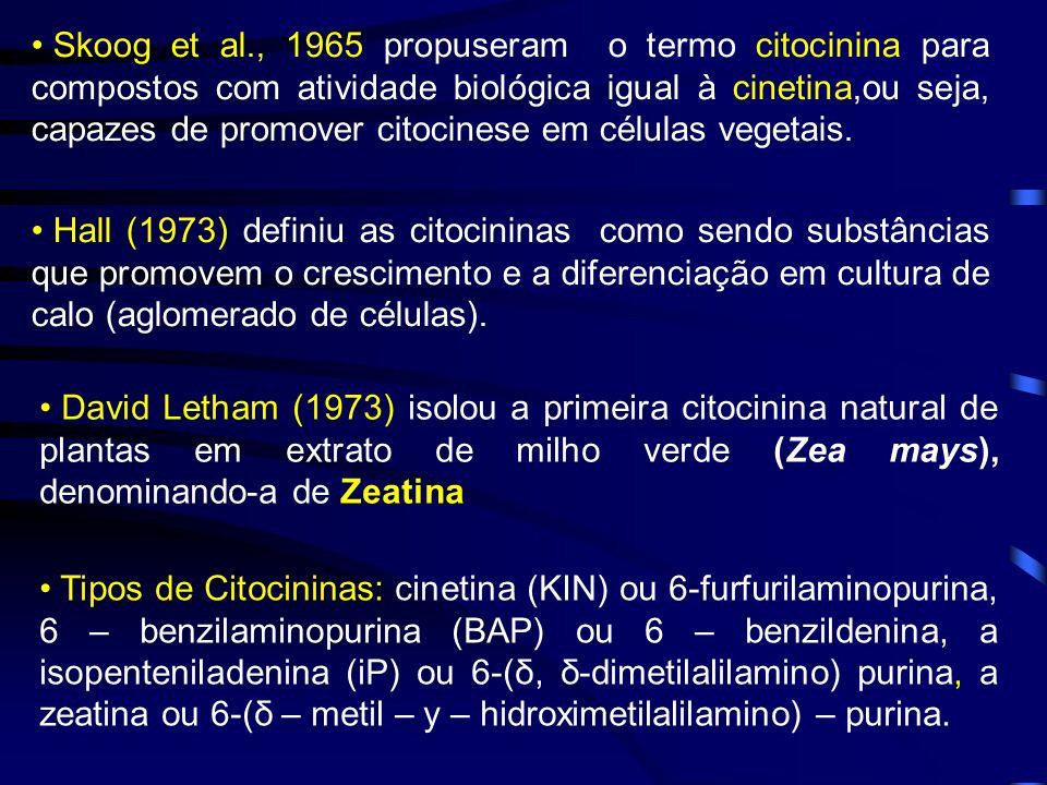 Skoog et al., 1965 propuseram o termo citocinina para compostos com atividade biológica igual à cinetina,ou seja, capazes de promover citocinese em células vegetais.
