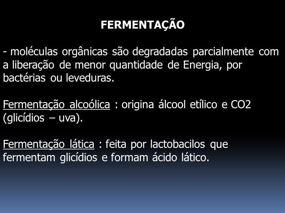 FERMENTAÇÃO - moléculas orgânicas são degradadas parcialmente com a liberação de menor quantidade de Energia, por bactérias ou leveduras. Fermentação