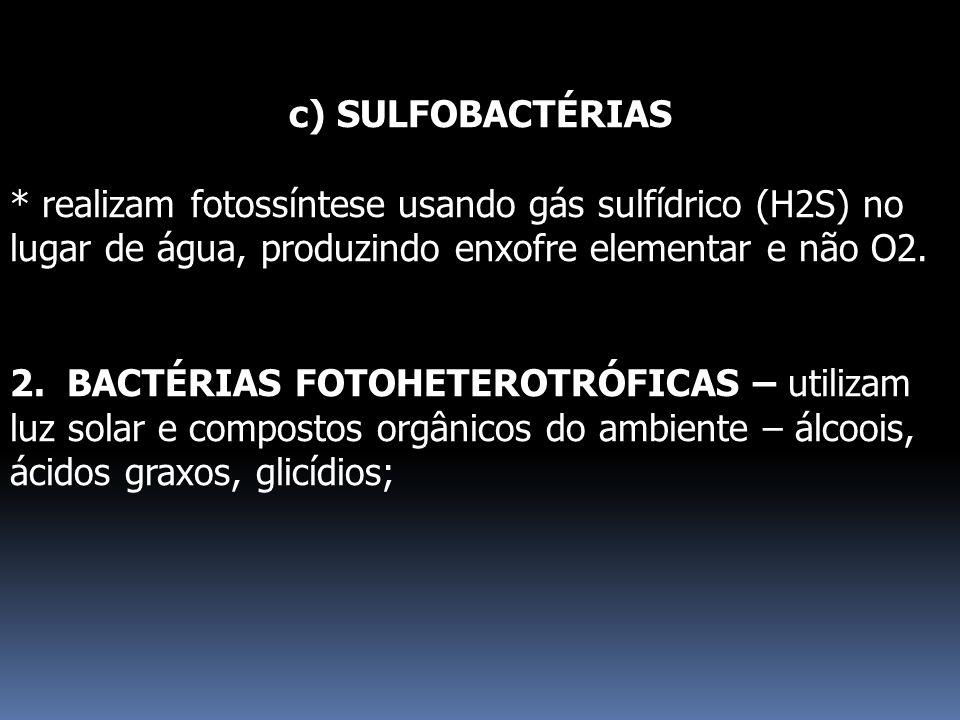 c) SULFOBACTÉRIAS * realizam fotossíntese usando gás sulfídrico (H2S) no lugar de água, produzindo enxofre elementar e não O2. 2. BACTÉRIAS FOTOHETERO
