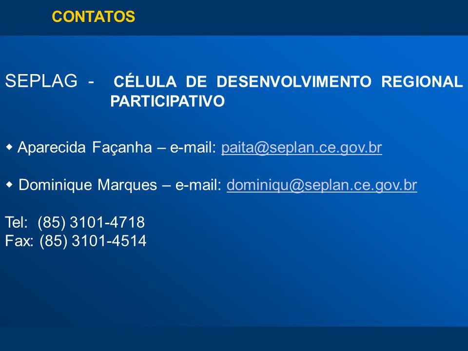 CONTATOS SEPLAG - CÉLULA DE DESENVOLVIMENTO REGIONAL PARTICIPATIVO Aparecida Façanha – e-mail: paita@seplan.ce.gov.brpaita@seplan.ce.gov.br Dominique