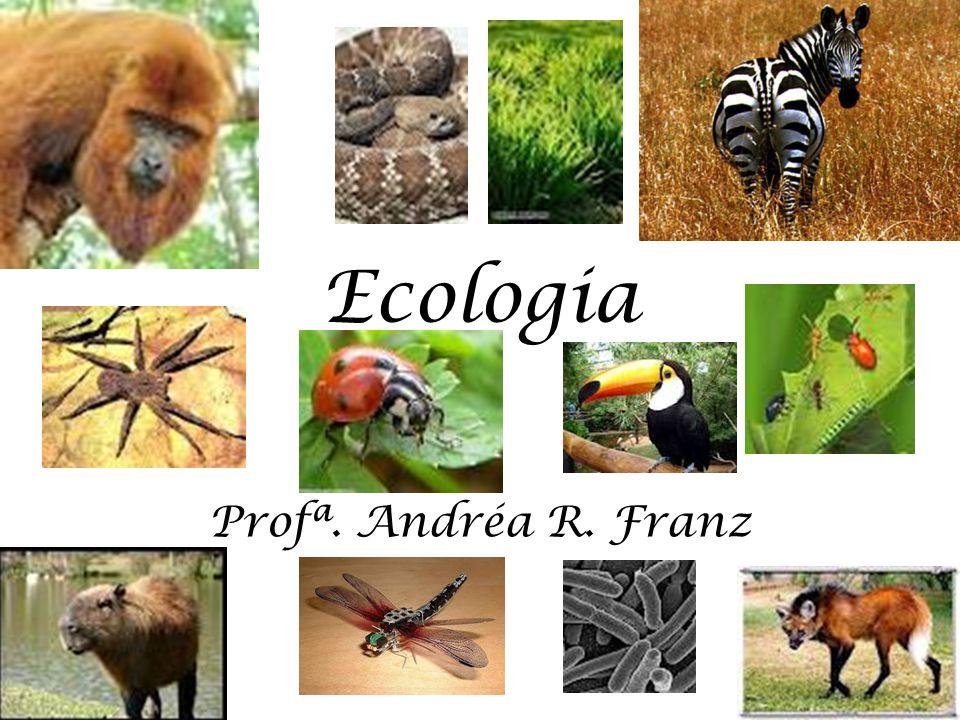 Ecologia Profª. Andréa R. Franz