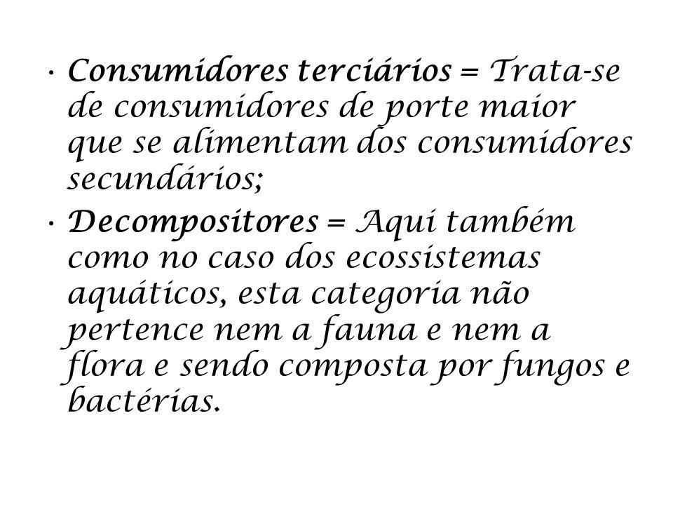 Consumidores terciários = Trata-se de consumidores de porte maior que se alimentam dos consumidores secundários; Decompositores = Aqui também como no