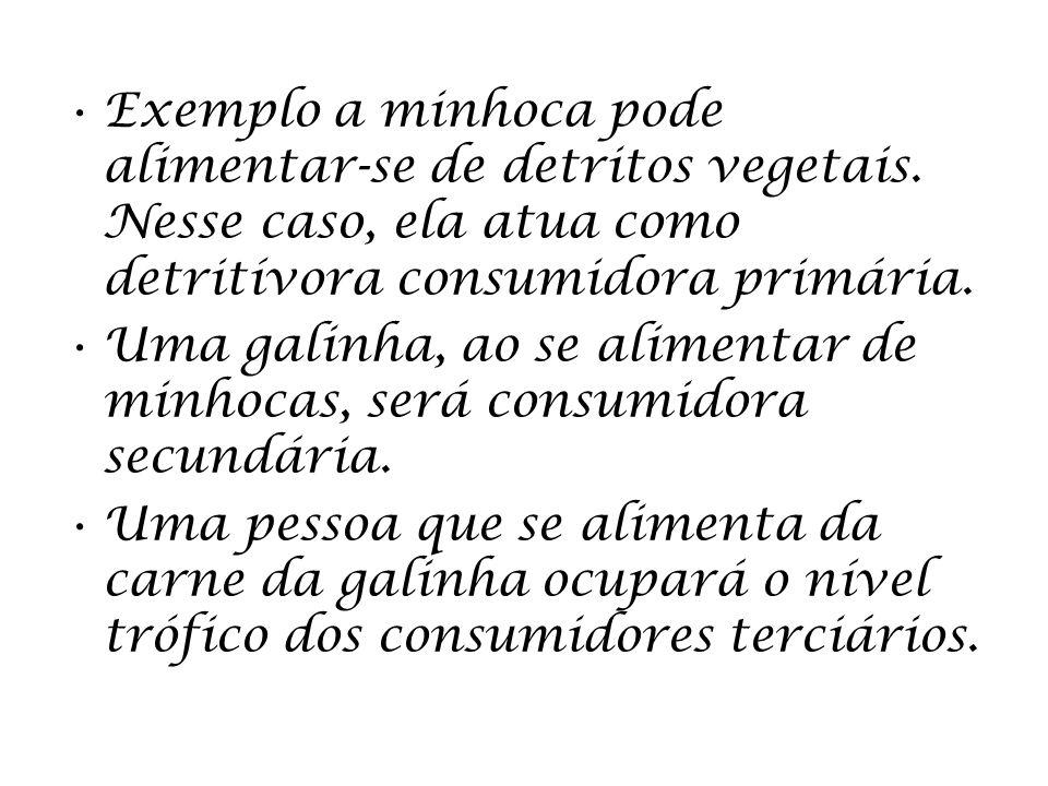 Exemplo a minhoca pode alimentar-se de detritos vegetais. Nesse caso, ela atua como detritívora consumidora primária. Uma galinha, ao se alimentar de