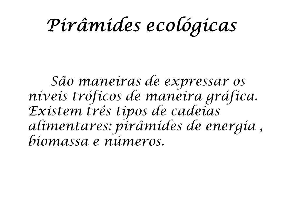Pirâmides ecológicas São maneiras de expressar os níveis tróficos de maneira gráfica. Existem três tipos de cadeias alimentares: pirâmides de energia,