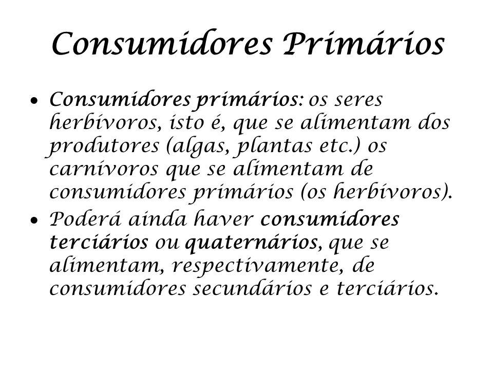 Consumidores Primários Consumidores primários: os seres herbívoros, isto é, que se alimentam dos produtores (algas, plantas etc.) os carnívoros que se