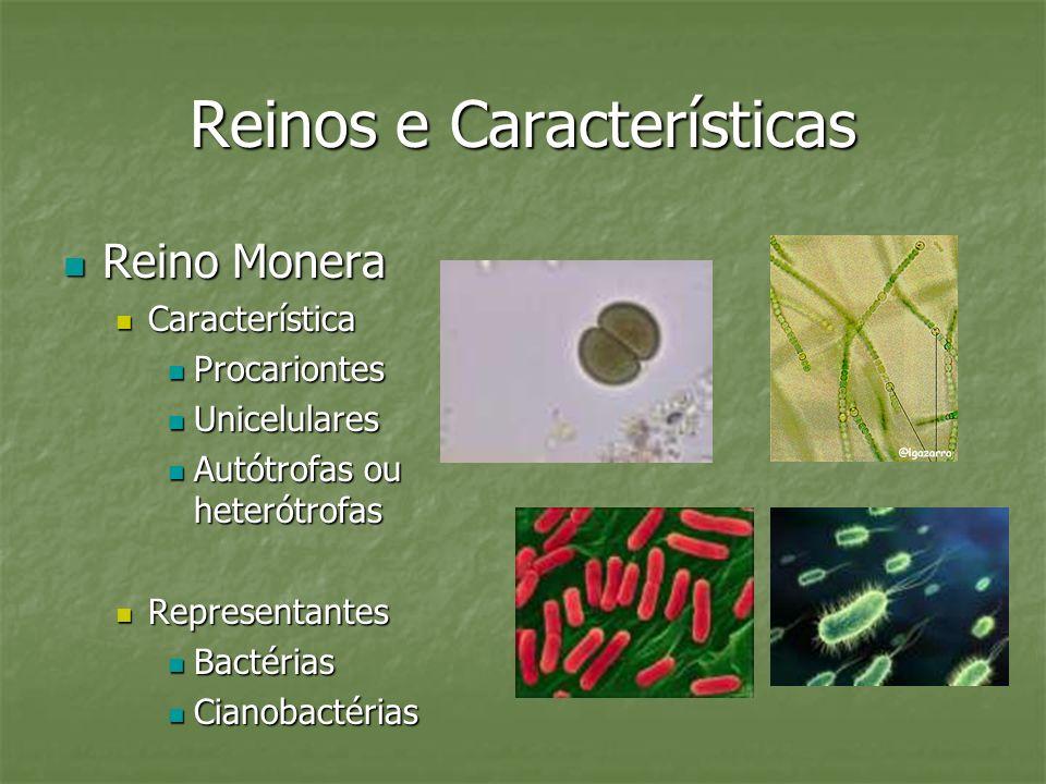 Reinos e Características Reino Monera Reino Monera Característica Característica Procariontes Procariontes Unicelulares Unicelulares Autótrofas ou het