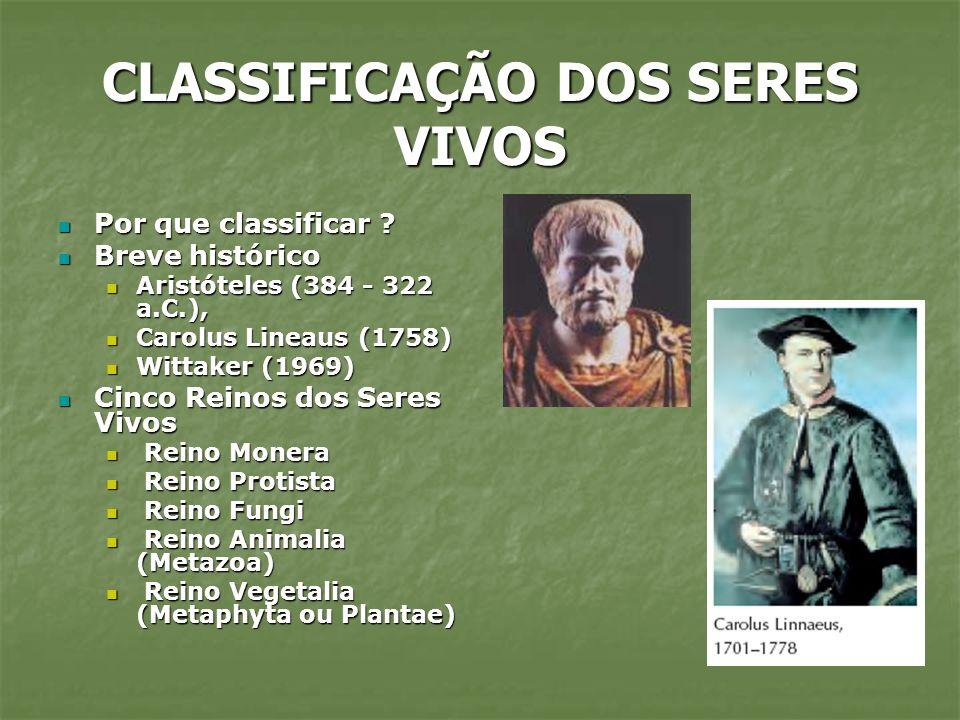 CLASSIFICAÇÃO DOS SERES VIVOS Por que classificar ? Por que classificar ? Breve histórico Breve histórico Aristóteles (384 - 322 a.C.), Aristóteles (3