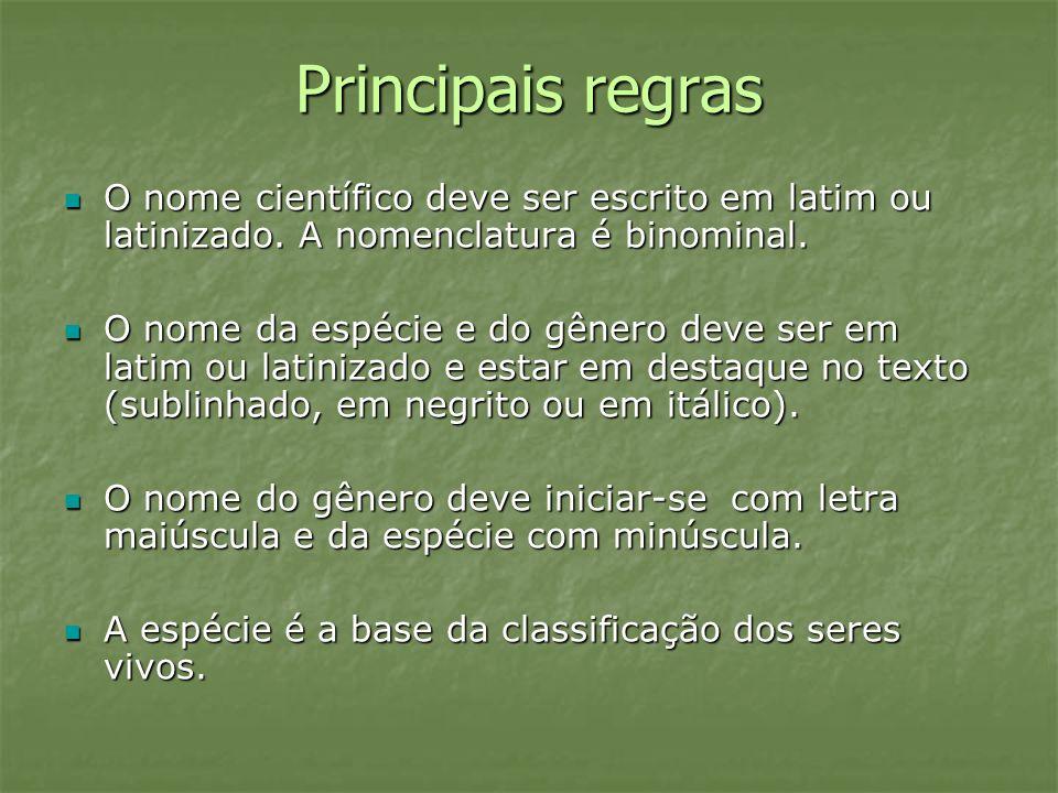 Principais regras O nome científico deve ser escrito em latim ou latinizado. A nomenclatura é binominal. O nome científico deve ser escrito em latim o